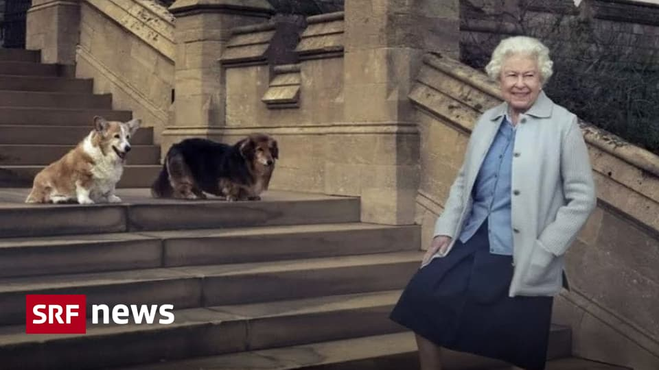 Queen is 95 - Elizabeth II finds comfort thanks to family, God and Corges - news