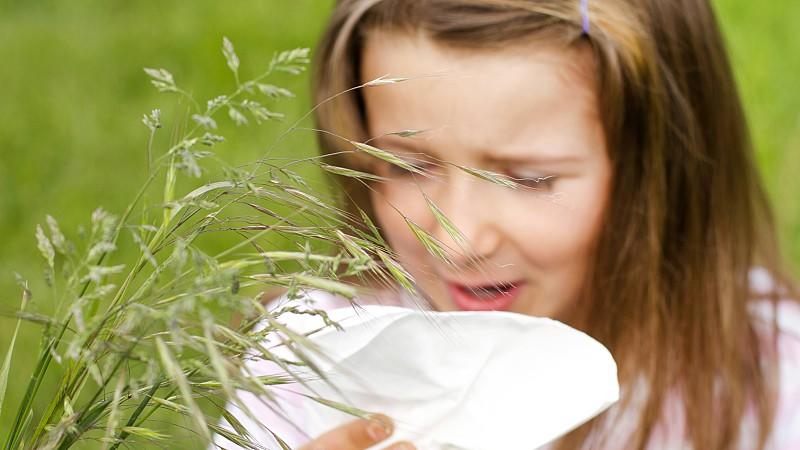 Does vitamin D help treat hay fever and asthma?