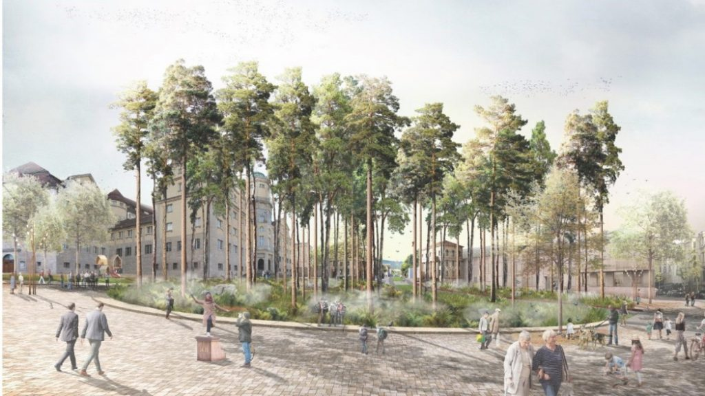 Brothers-Grimm-Platz in Kassel: like tree nursery - culture