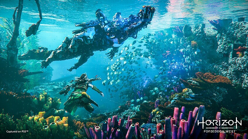 Developer about the game world of Horizon: Forbidden West