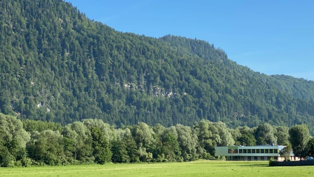 Fatal stings in Tirol - show