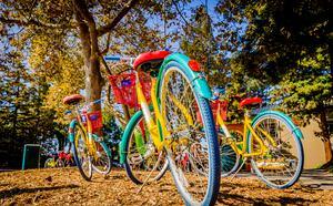 Google Campus - Silicon Valley