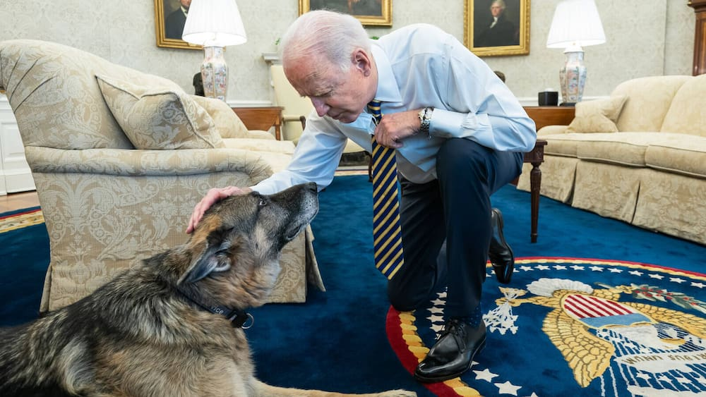 Joe and Jill Biden mourn deceased German Shepherd champion at the White House