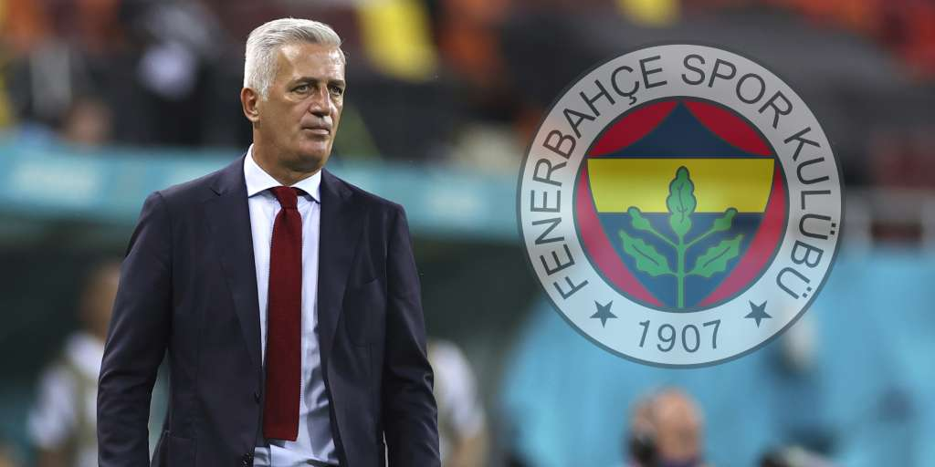 Coach Vladimir Petkovic is supposed to leave the Swiss national team after his attacker