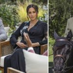 Queen Elizabeth kicks Harry and Meghan out of Balmoral Castle