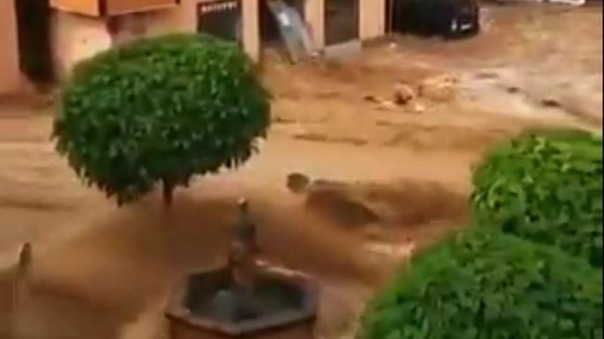 Severe weather in Austria: Floods sweep through Hallen