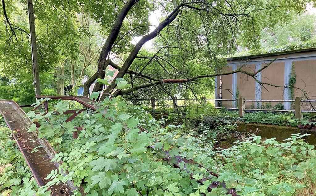Der Garagenkomplex an der Leipziger Straße umfasst beide Uferbereich der Klinke und soll künftig als Grünfläche öffentlich genutzt werden können.
