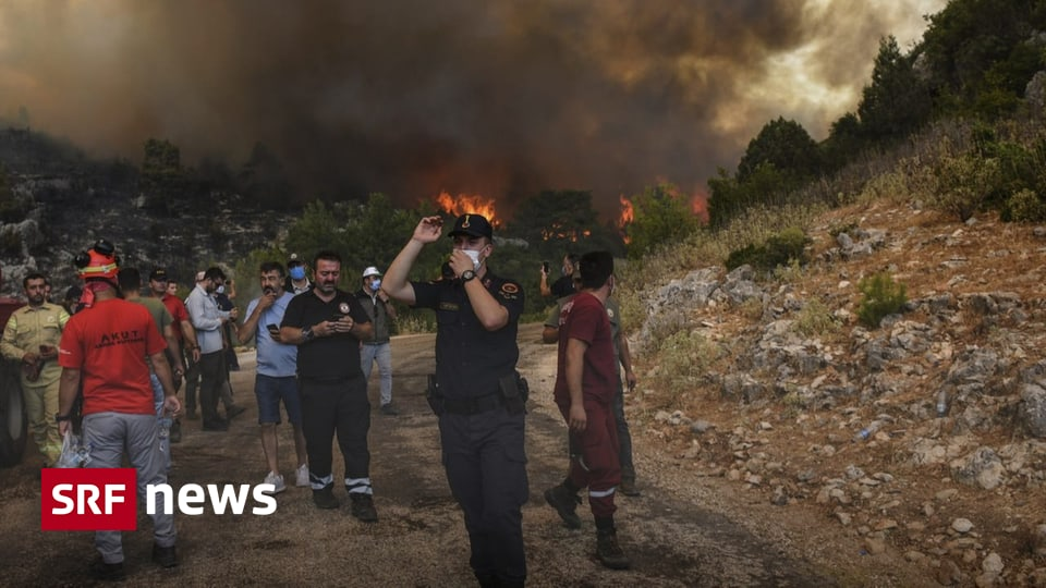Heat and storms - Firefighters battle wildfires in southern Europe - News