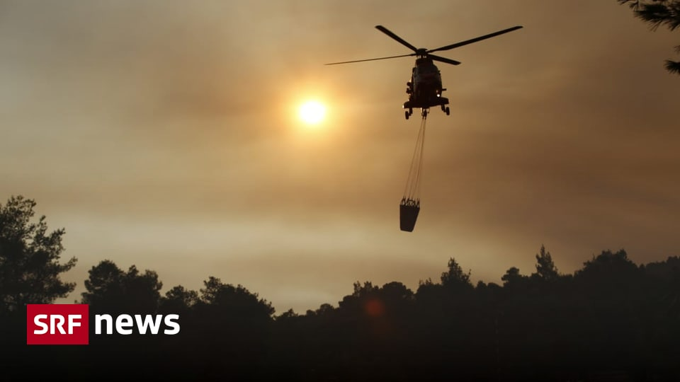Firefighters continue to fight - no end in sight to southern European bushfires - News