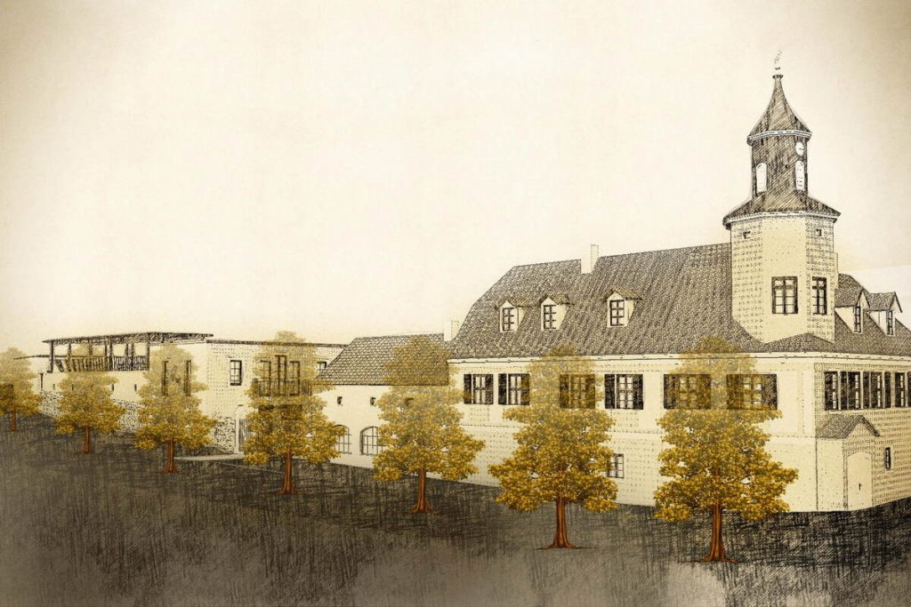 Radebeul: So Ost wine has more space and time to ripen
