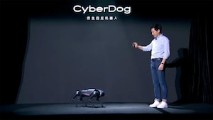 If the person in the photo is 170 cm tall, then the robot dog should be 40 cm tall and more than 60 cm tall.