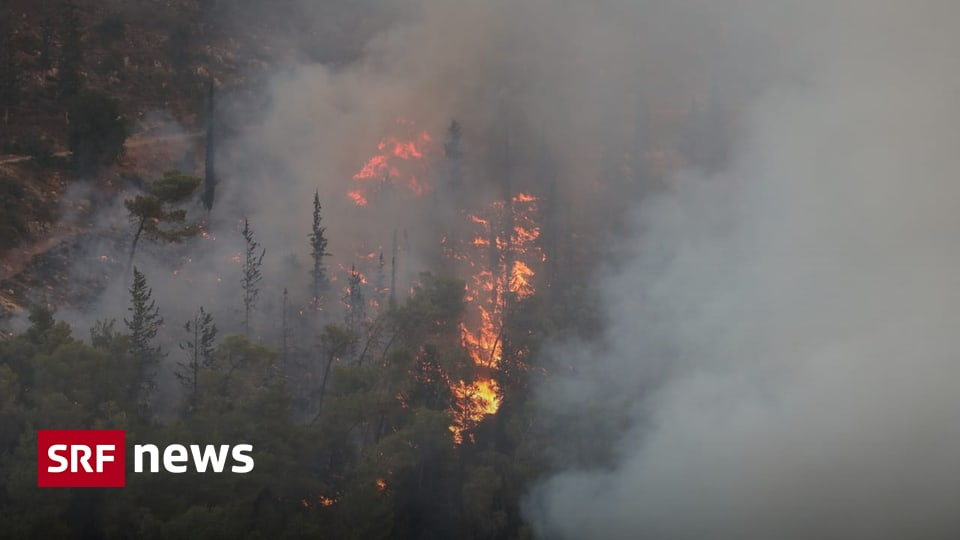 Fire in Israel - Forest fires near Jerusalem not yet controlled