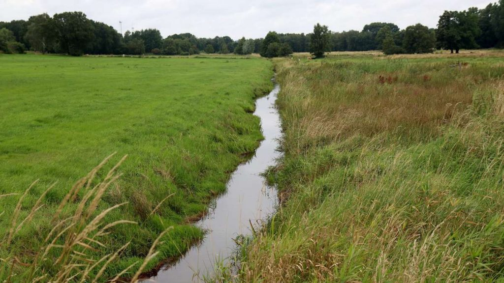 Giving water space is important for flood protection in Solinger Land
