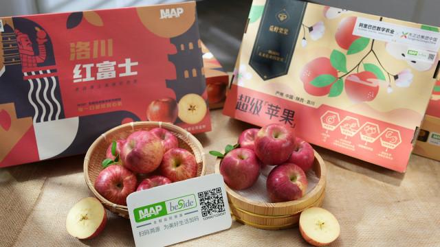 Via QR-Code bekommen Verbraucher Daten zu Äpfeln aus Syngentas MAP-Programm.