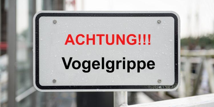 Sign with the inscription: Caution !!!  Bird flu