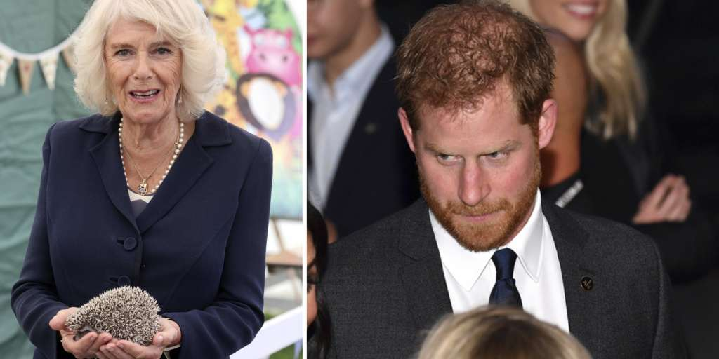 Prince Harry is supposed to reveal the secrets of his stepmother Camilla
