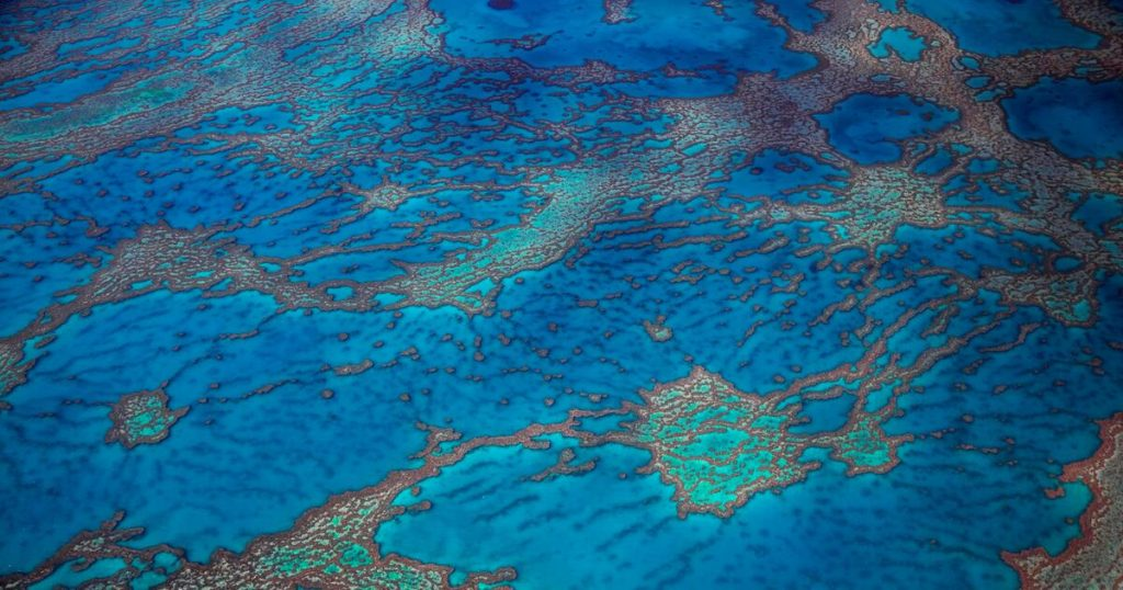 The Great Barrier Reef off Australia: How cloud makers want to save coral reefs