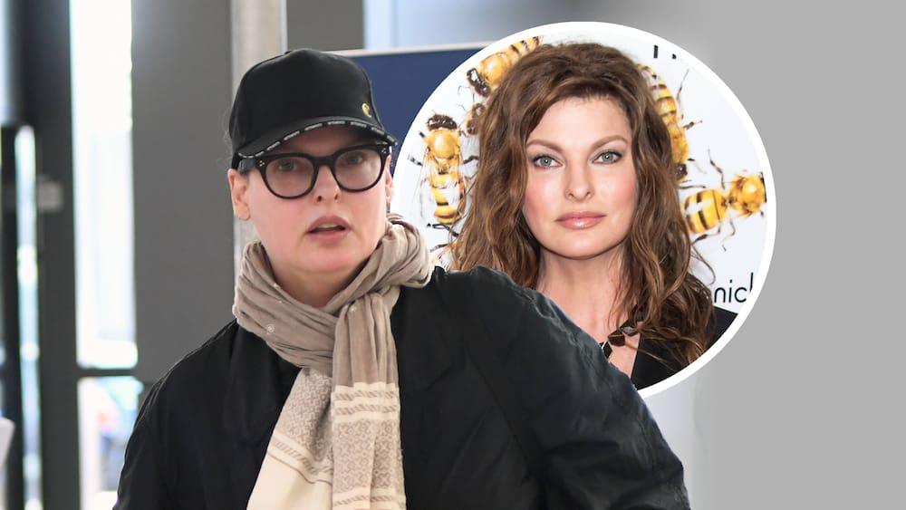 Linda Evangelista wants 46 million Swiss francs for a failed plastic surgery