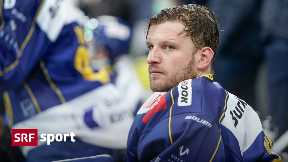Swiss ice hockey news - Mayer on loan to SCL Tigers federation - Sport